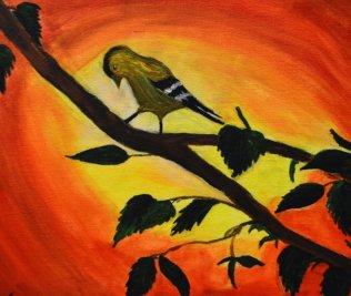 sunny-gold-finch